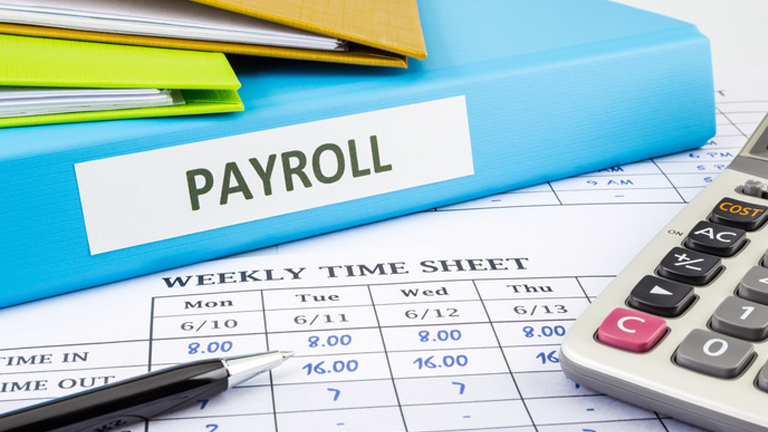 Online Payroll Software, Payroll Software, Payroll Software in Delhi, Payroll Software in India, Payroll Software Solution, Payroll Software System, Payroll Solution, Software Soultions in India