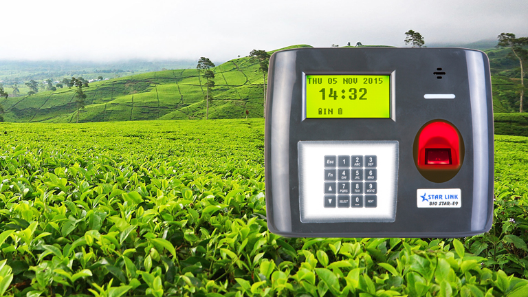 tea garden biometric solution, biometric in tea garden, tea garden solution, biometric, Biometric Access Control, biometric devices, biometric access machine