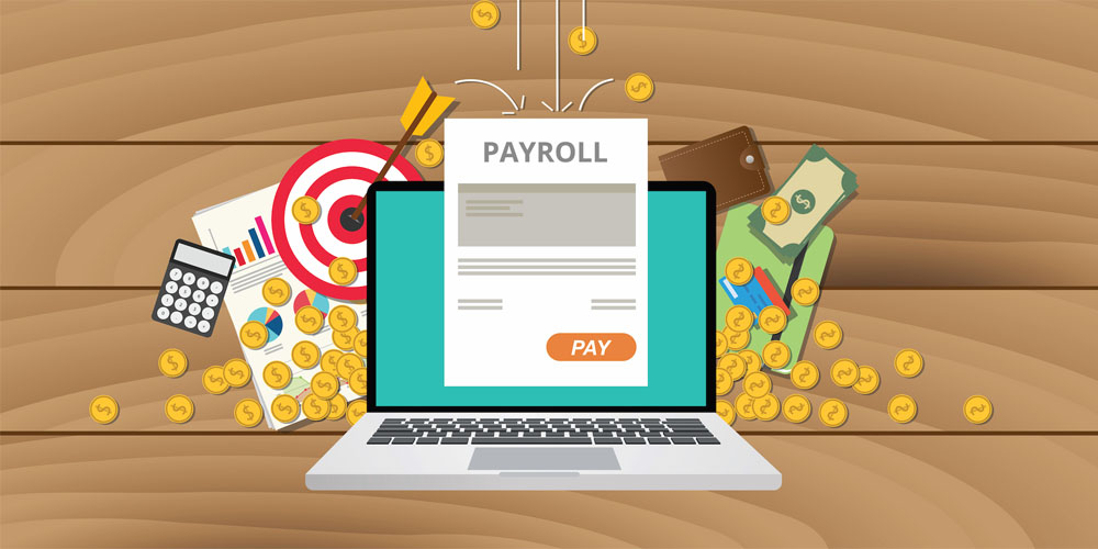 payroll software, Payroll Software in Delhi, Payroll Software System, Payroll Software in India, payroll system, Payroll Software Solution