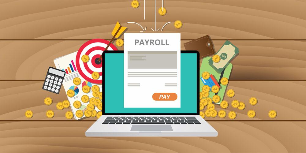 payroll software, Payroll Software in Delhi, Payroll Software System, Payroll Software in India, payroll system, Payroll Software Solution