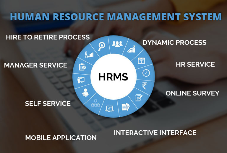 Savvy HRMS Software