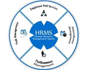 hr software, hr management software, best hr software, hr software system